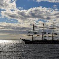 Рандеву в море :: Ольга