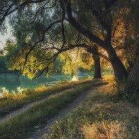 На восходе у реки... :: Александр К.
