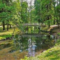 Где-то в Гатчинском Парке(18.06.2018)... :: Sergey Gordoff
