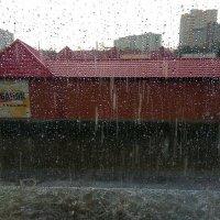 Дождь :: Татьяна Котельникова