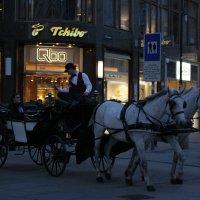 Вечер в Вене... :: mirtine