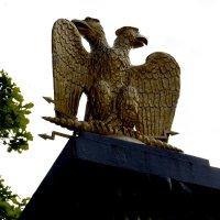 Двуглавый орел... :: Дмитрий Петренко