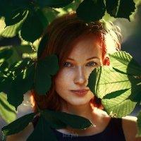 Красное в зеленом :: Сергей Басин