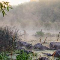 рыбак в тумане.. :: юрий иванов