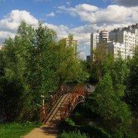 Не знаю ничего лучше лета :-) :: Андрей Лукьянов