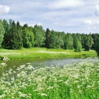 Река Славянка в Павловске :: Aida10