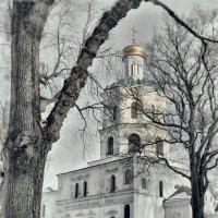 Колегиум. :: Андрий Майковский