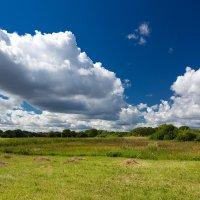 Пейзаж со скошенной травой :: Александр Синдерёв