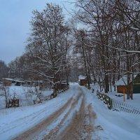Зимний пейзаж в Гродненской области. :: Александр Сапунов