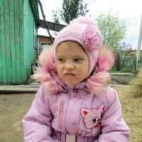 Племяшкины думы :: Светлана Рябова-Шатунова
