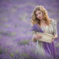 Фиолетовые поля :: Оксана