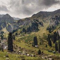 К лагерю альпинистов :: LudMila