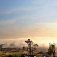 Утро, солнце и туман! :: Антоха Л