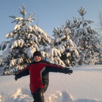 Зимний лес :: Irina