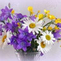 Полевые цветы :: Зося Каминская