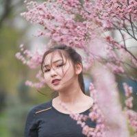 Японское чудо в Азиатской красоте. :: Вадим Романович