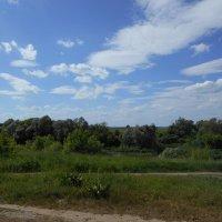 Вид на Рыбновский район из посёлка Солотча :: Tarka