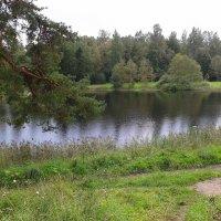 Гатчина. Приоратский парк.Чёрное озеро :: Ирэн