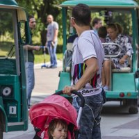 на прогулке :: Петр Беляков