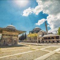 Фонтан и мечеть Кылыч Али Паши в Топхане :: Ирина Лепнёва