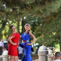 Свадебные контрасты :: Анатолий Шулков