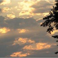 Небо на закате :: Анастасия сосновская