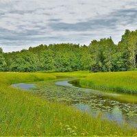Лето над Славянкой рекой... :: Sergey Gordoff