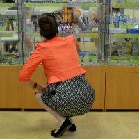 Какая женщина откажется от косметики! :: Михаил Столяров