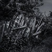 Забор :: Nn semonov_nn