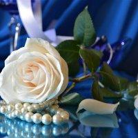 Белая роза :: Larisa Simonenkova