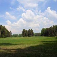 Павловский парк :: Lyudmila