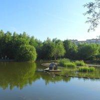 Пруд в парке Дубрава :: Ирина Via
