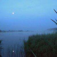 Синий туман... :: Сергей F