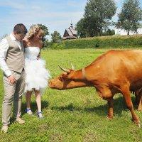 Свадьба в г.Суздаль. Лев и Анна. :: Валерий Гришин