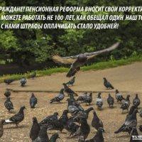 Песня о нервах :: Михаил Тищенко