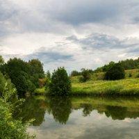 Маленький пруд :: Вера Сафонова