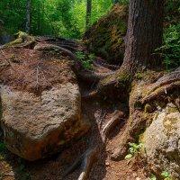 Эти камни лежат тут вечно.. :: Nikolay Svetin