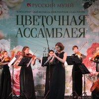 Камерный оркестр «Chamberries» :: Наталья Герасимова