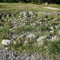 Каменные лабиринты на Большом Соловецком острове :: Елена Павлова (Смолова)