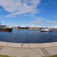 И кто только не плавает...упс..  конечно ходят )) по нашей речке..)) :: tipchik