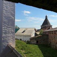 Прогулка по монастырским стенам :: Ольга