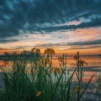 Рассвет – это пробуждение людей и природы, начало нового дня. :: Андрей Лепилин