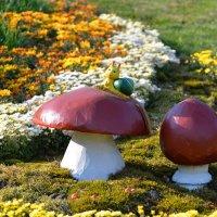 На выставке цветов: лето в кадре :: Тамара Бедай