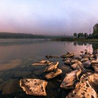 утро на озере :: Василий И Иваненко
