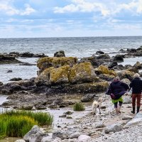 Вдоль берега Балтийского моря :: Александр