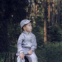 В лесу :: Алексей Леухин
