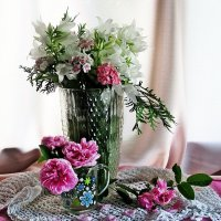 Мои цветочки :: Лариса