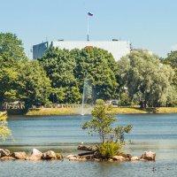 На озере Разлив :: Виталий