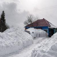 Уже весна, а снег идёт :: alteragen Абанин Г.