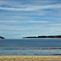 Арктический поход розовых водомерок на краю Земли :: Кай-8 (Ярослав) Забелин